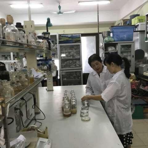 mẫu túi nilon sử dụng chế phẩm sinh học